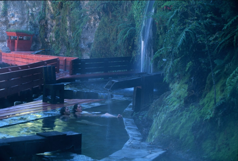 Soak, Steam, Dream: Reinventing Bathing Culture