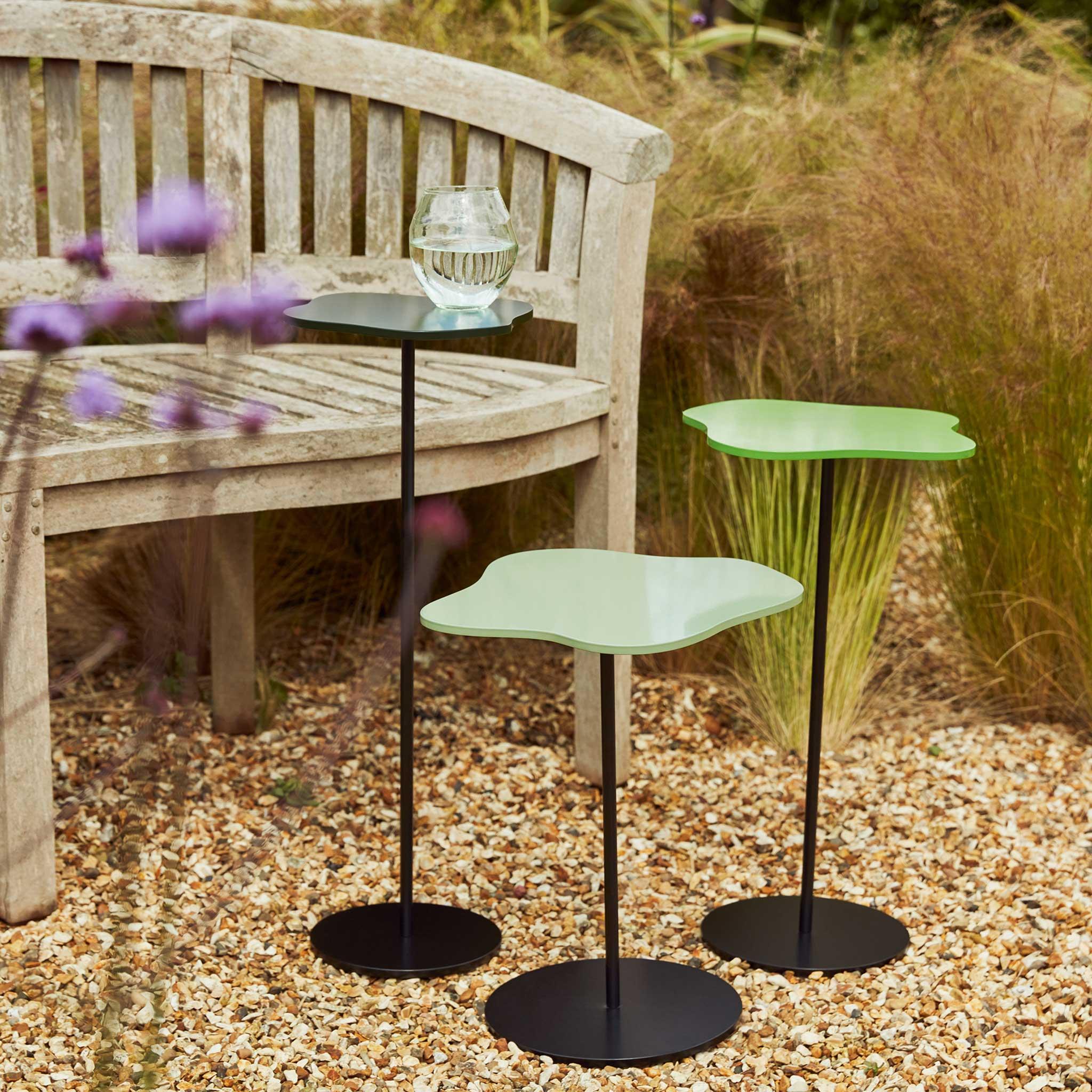 Garden-Lily-Forest,-Pistachio,-Grass